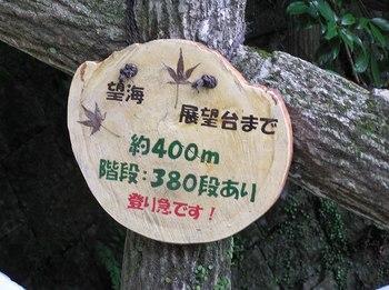 P1010604