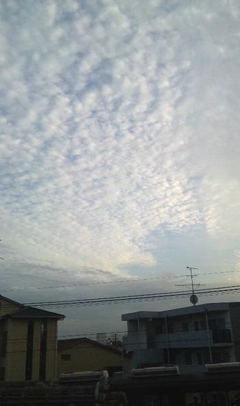 2013_8_26